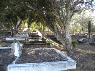 photo of Balmoral (section 13) Cemetery