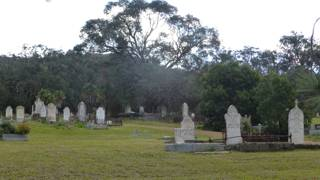 photo of Riddells Creek Cemetery