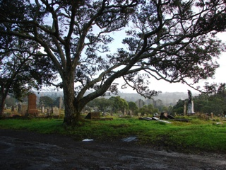 photo of Waikumete Cemetery