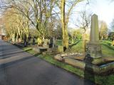 Scartho Road (north reserved borders)