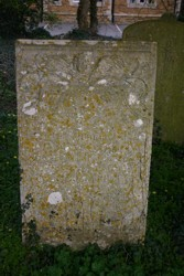 lichen damage at Barrowby, Lincolnshire (5908)