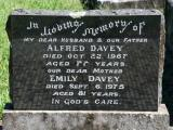 image of grave number 781133