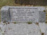 image of grave number 575530