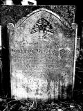 image of grave number 27874