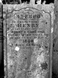 image of grave number 27848