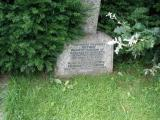 image of grave number 236706