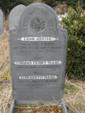 image of grave number 295507