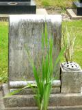 image of grave number 47433
