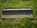image of grave number 16878
