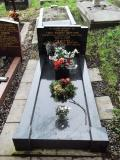 image of grave number 499294
