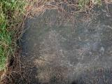 image of grave number 749568