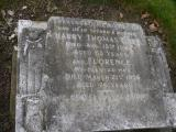 image of grave number 238656