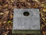 image of grave number 199242