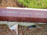 image of grave number 343150