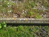 image of grave number 312841