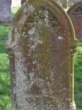 image of grave number 127050