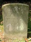 image of grave number 681609