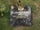 image of grave number 466018