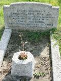 image of grave number 155437