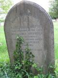 image of grave number 545604