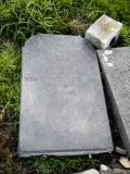 image of grave number 119258