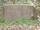 image of grave number 156546