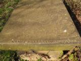 image of grave number 432875