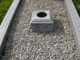 image of grave number 142075
