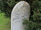 image of grave number 295944